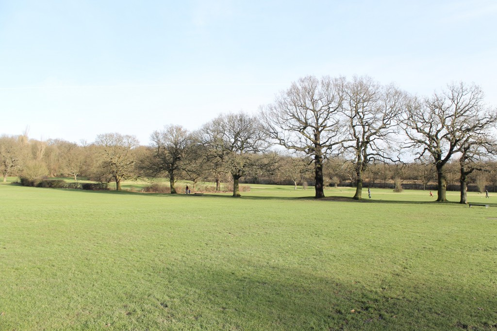 Tudor Park2
